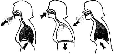 дыхательная гимнастика бодифлекс - этапы