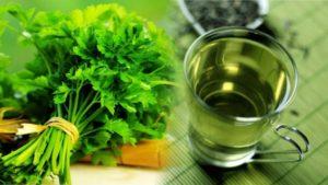 польза для организма женщины - хранение зелени