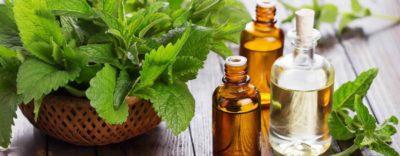 лекарственная трава в восточной медицине