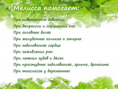 лекарственные свойства травы для организма