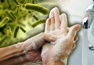восстановить микрофлору кишечника - кто не любит микробы