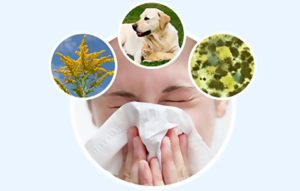 Диагностика аллергии - как выявить аллерген у взрослого