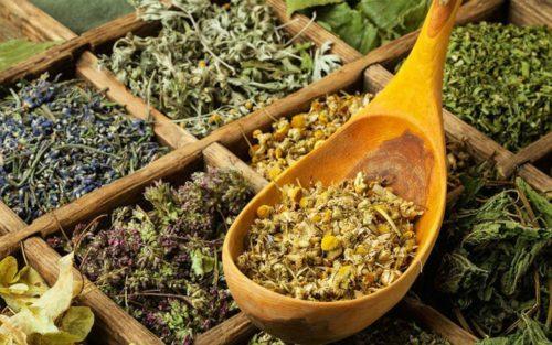 лечение предменструального синдрома - фитотерапия и гомеопатия