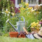О пользе садоводства для физического и психического здоровья