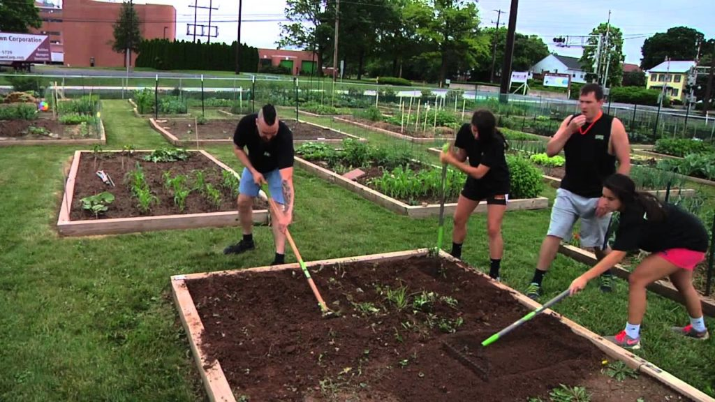польза работы по садоводству - физические упражнения