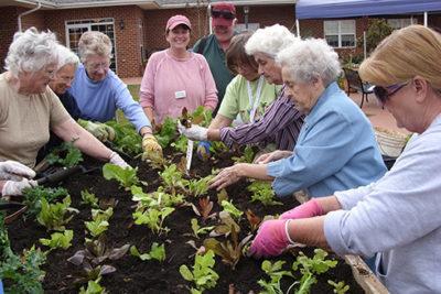 пожилым людям садоводство помогает сохранить память
