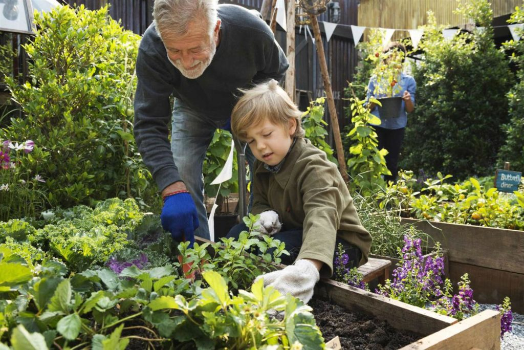 работа в саду - элемент воспитания молодого поколения