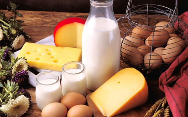 веганы не едят яйца и молочные продукты а вегетарианцы едят