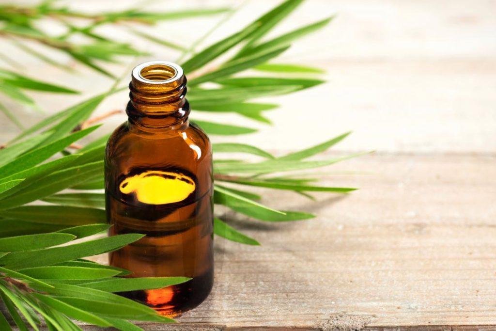 масло чайного дерева снижает зуд при эпидермофитии
