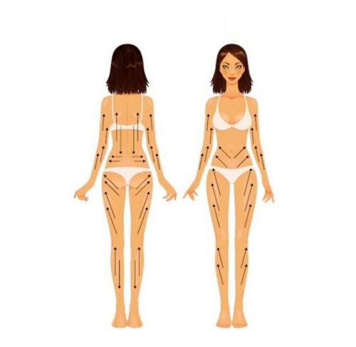 линии направления массажа на теле
