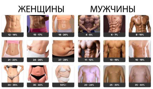 лептинорезистентность зависит от процента жира