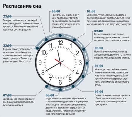 пробуждение в различные часы
