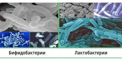 пробиотики сложно хранить